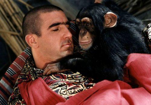Les Rois du Quiz #1 : La filmographie d'Éric Cantona